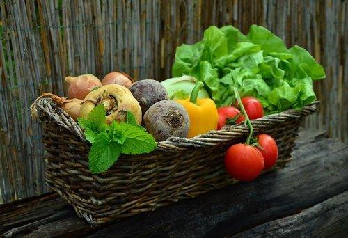 Den perfekta trädgården för din sunda livsstil
